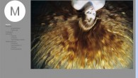 2011- Conception et réalisation du site vitrine de l'artiste et photographe Vincenza Mirisolla. Utilisation du CMS WordPress. Voir le site